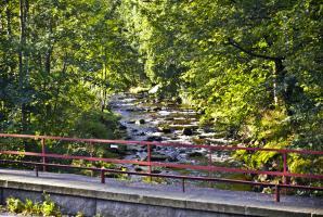 Górska rzeka w Świeradowie
