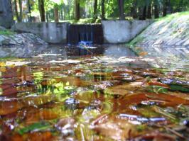 Woda przy zbiorniku w parku