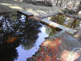 Mała zapora wodna w Parku Zdrojowym