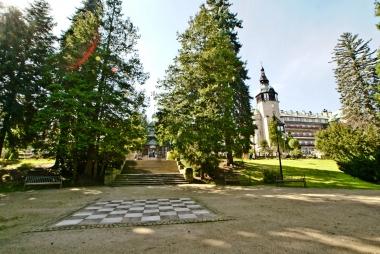 Przy szachownicy w parku