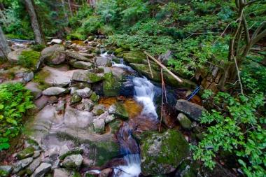 Potok Kamieńczyka przy moście