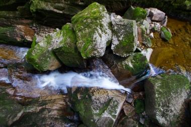 Potok Kamieńczyka w kanionie