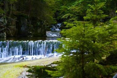 Potok górski wzdłuż szlaku turystycznego