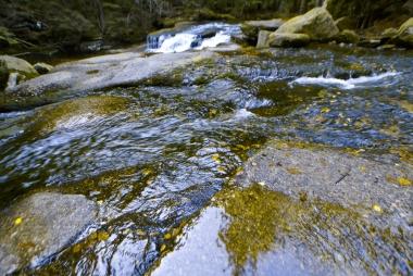 Odbicie obrazu w potoku górskim