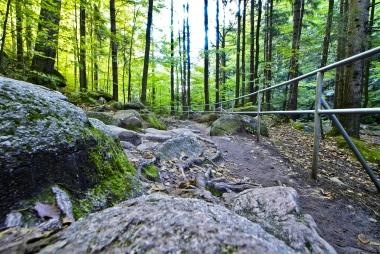 Ścieżka turystyczna z balustradą