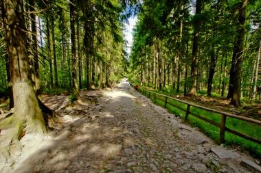 Kamienisty szlak turystyczny z wodospadu Kamieńczyka