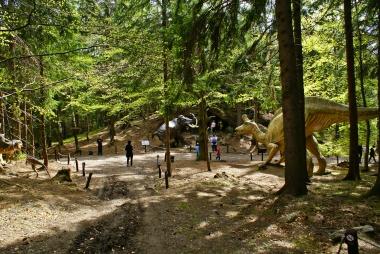 Na ścieżce pośród drzew w Dinoparku