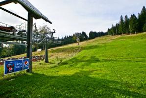 Stok narciarski otoczony lasem w Świeradowie