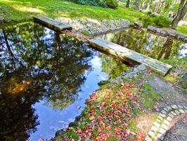 Przy zbiorniku wodnym w parku