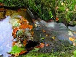 Strumień wody w parku