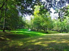 W Parku Zdrojowym