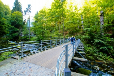 Przy moście w parku