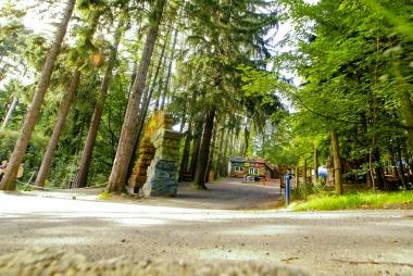 Wejście do parku w lesie