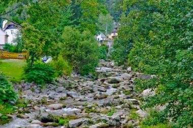 Rzeka z kamienistym dnem