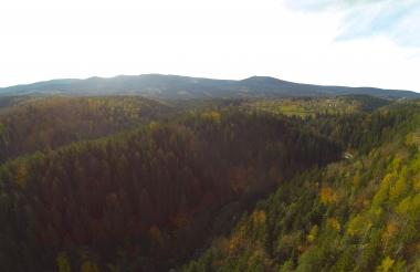 Jesienny Złoty Widok