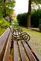 Szereg ławek w parku
